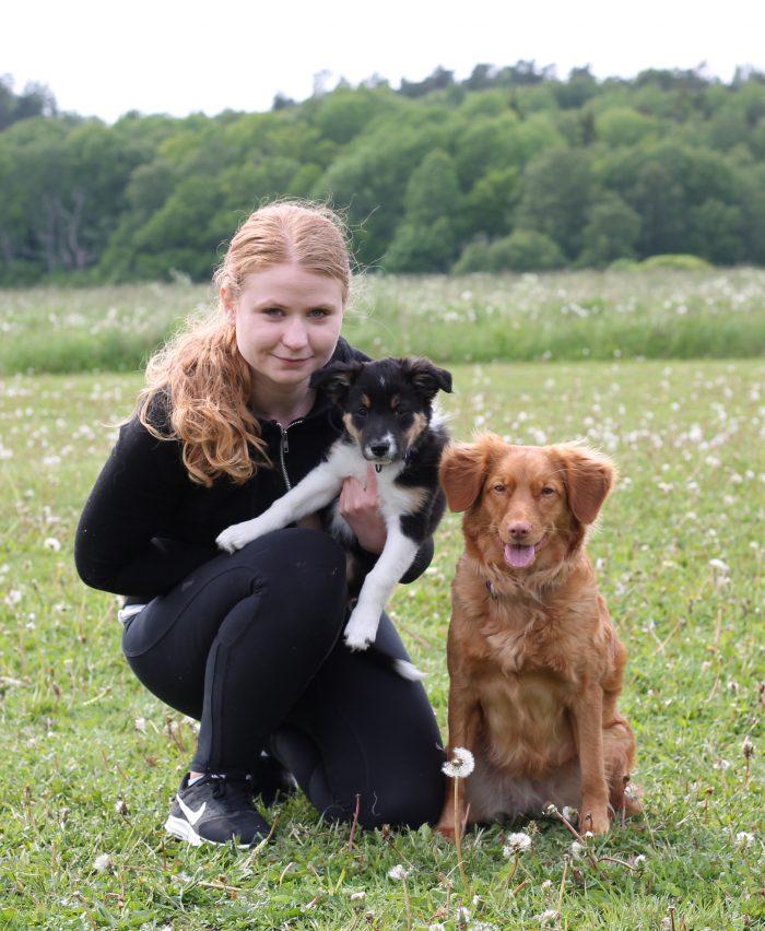 Lisa, Bovary och Julie